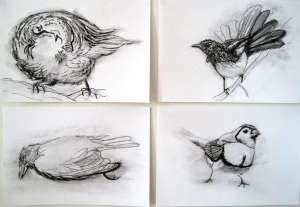 Goldsmith drawings in charcoal