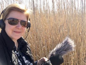 Kim V Goldsmith digital media artist