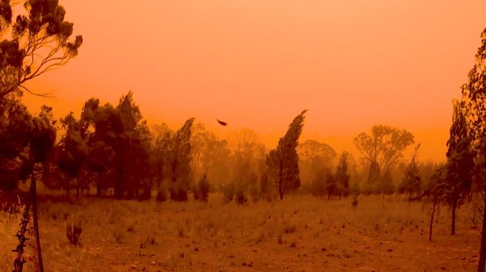 Dust storm of the Waagan (Eye of the Corvus)
