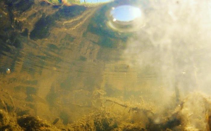 Wetland gases Macquarie Marshes 2020 Kim V. Goldsmith