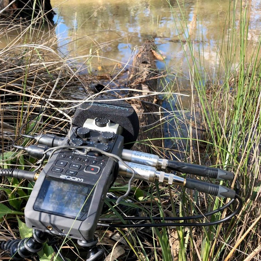 Field recording with Zoom H6